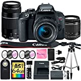 Canon EOS Rebel T7i DSLR Camera + CANON 18-55mm Lens + CANON 75-300mm III Lens + SD Card Reader + 64gb SDXC + Remote + Spare Battery + Camera Works Accessory Bundle + Microfiber Cloth