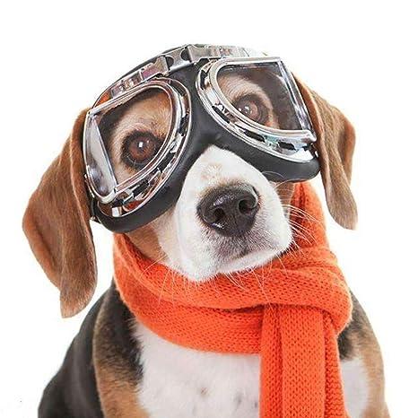 KAJIMMA Gafas de Sol Plegables para Mascotas Gafas de Sol ...