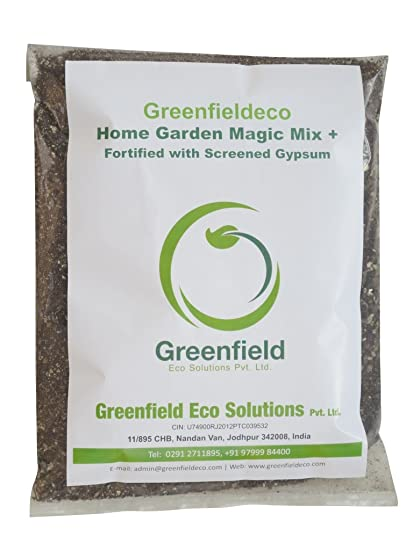 Greenfieldeco HOME GARDEN MAGIC MIX PLUS (900Gm) for Nursery ...