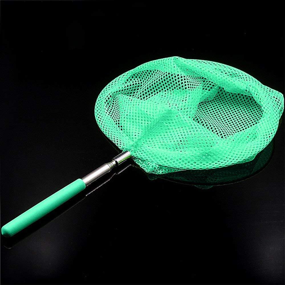 Ogquaton Ni/ños Telesc/ópico Insectos Net Jard/ín de Juguete al Aire Libre atrapar Insectos Mariposa Pescado peque/ño Verde