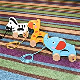 Wooden Pull Along Toy Set of 3- Beautiful