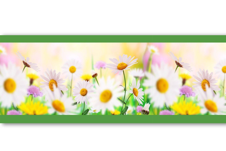 Selbstklebende Bordü re 'Daisyfield', 4-teilig 560x15cm, Tapetenbordü re, Wandbordü re, Borte, Wanddeko,Gä nseblü mchen, Blumen wandmotiv24