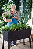 Keter Easy 31.7 Gallon Raised Garden Bed with Self