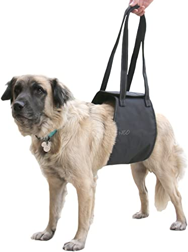 Max-and-Neo-Dog-Lift-Support-and-Rehab-Harness-for-Dogs-with-Weak-Rear-Legs