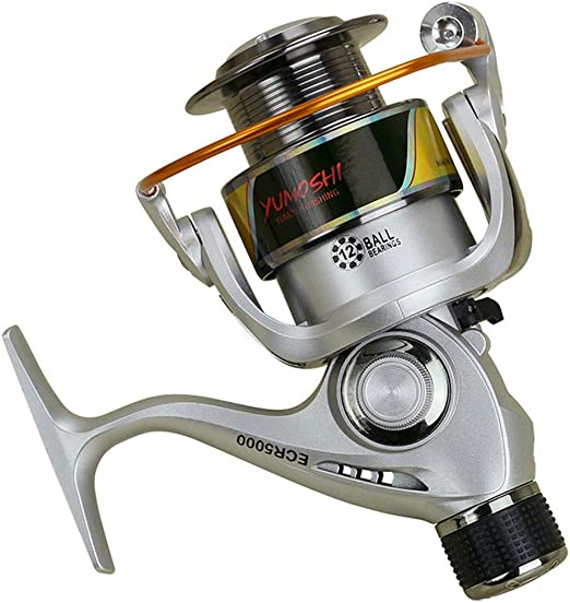 Carrete de Pesca de Spinning 5.5:1 12BB Ruedas Serie ECR Rueda Spinning Wheel Pesca carretilha Cebo Tipo Sea Rock Pesca señuelo,3000model: Amazon.es: Hogar