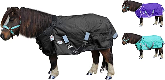 Tough 1 Winter Horse Turnout Blanket Super Heavyweight 1200D Turquoise