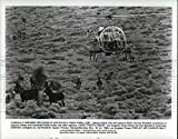 1986 Press Photo Cowboys in helicopter her wild burros in Death Valley - 8 x 10.25 in. - Historic Images