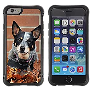 ZETECH CASES / Apple Iphone 6 / AUSTRALIAN CATTLE DOG BLACK SPOTS / australiano ganado perro negro puntos / Robusto Caso Carcaso Billetera Shell Armor Funda Case Cover Slim Armor