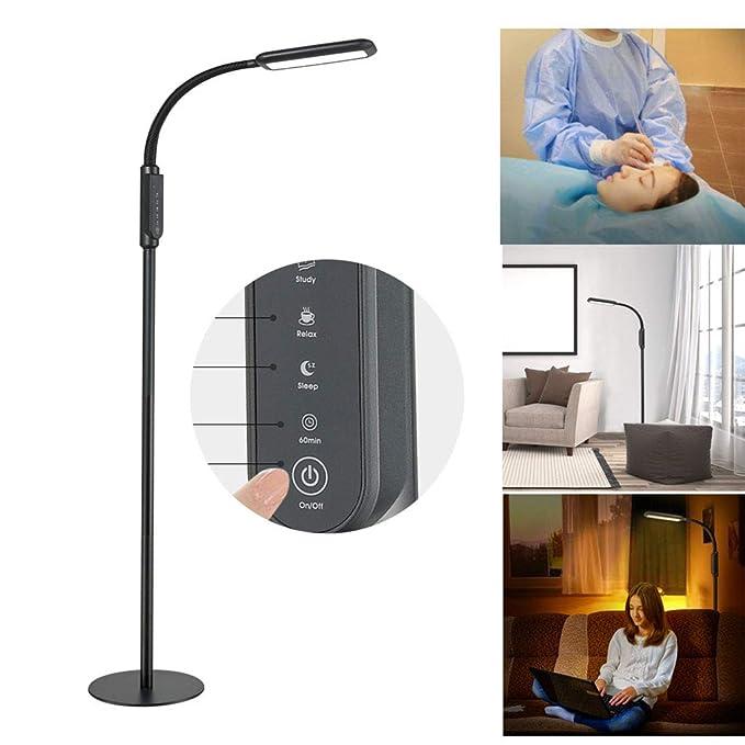 LIJUEZL Lámpara de pie 2 en 1 LED con Interruptor táctil para ...