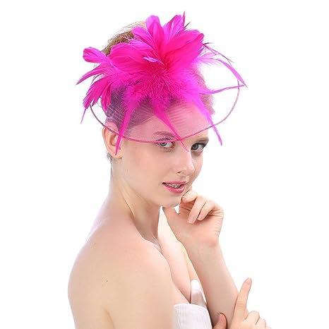 Amazon.com  Tulle Feather Fascinator Headband Mesh Hat Net Flower ... 3a357ccbb3c