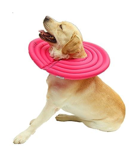 Collar isabelino Coofone inteligente para proceso de recuperación de perros y gatos (interior de espuma