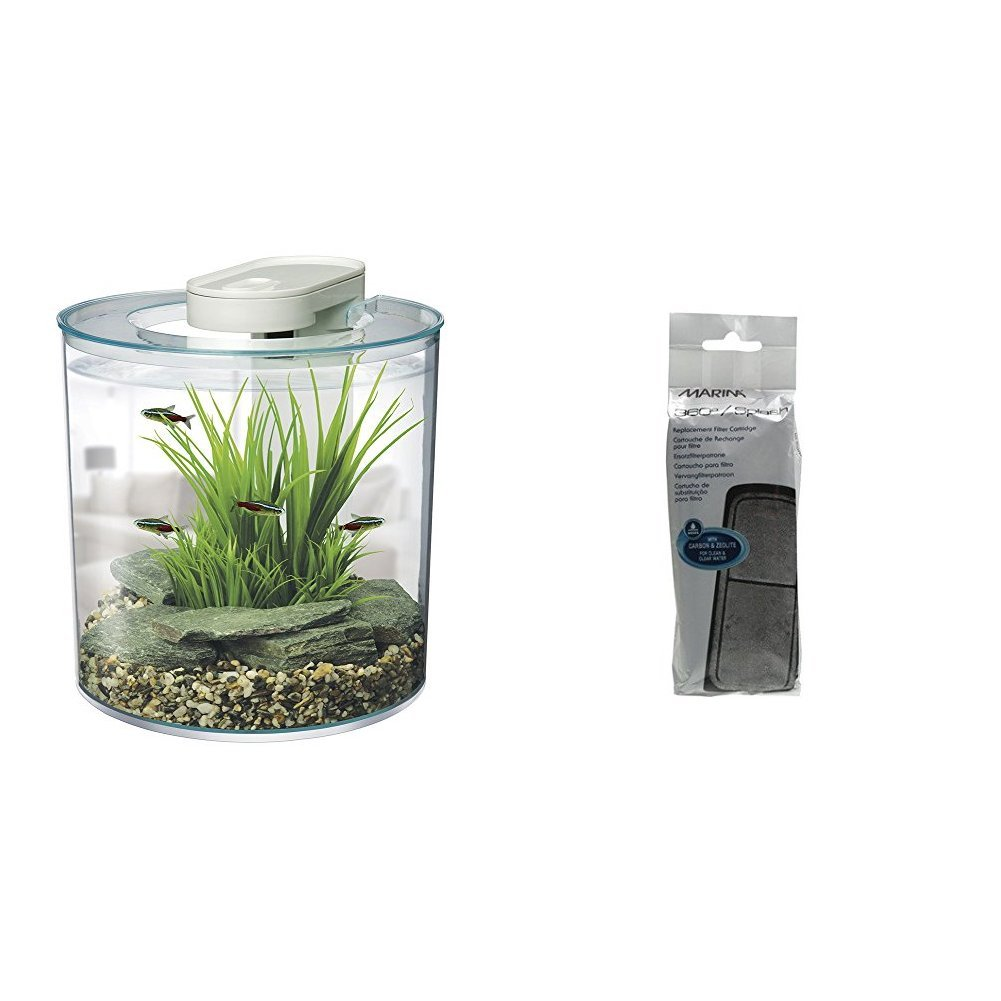 Aquariums & Fish Bowls : Online Shopping For Clothing