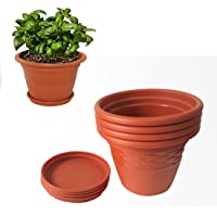 Meded Siti Plast Heavy Duty Plastic Planter Pots with Bottom Tray Color Terracotta