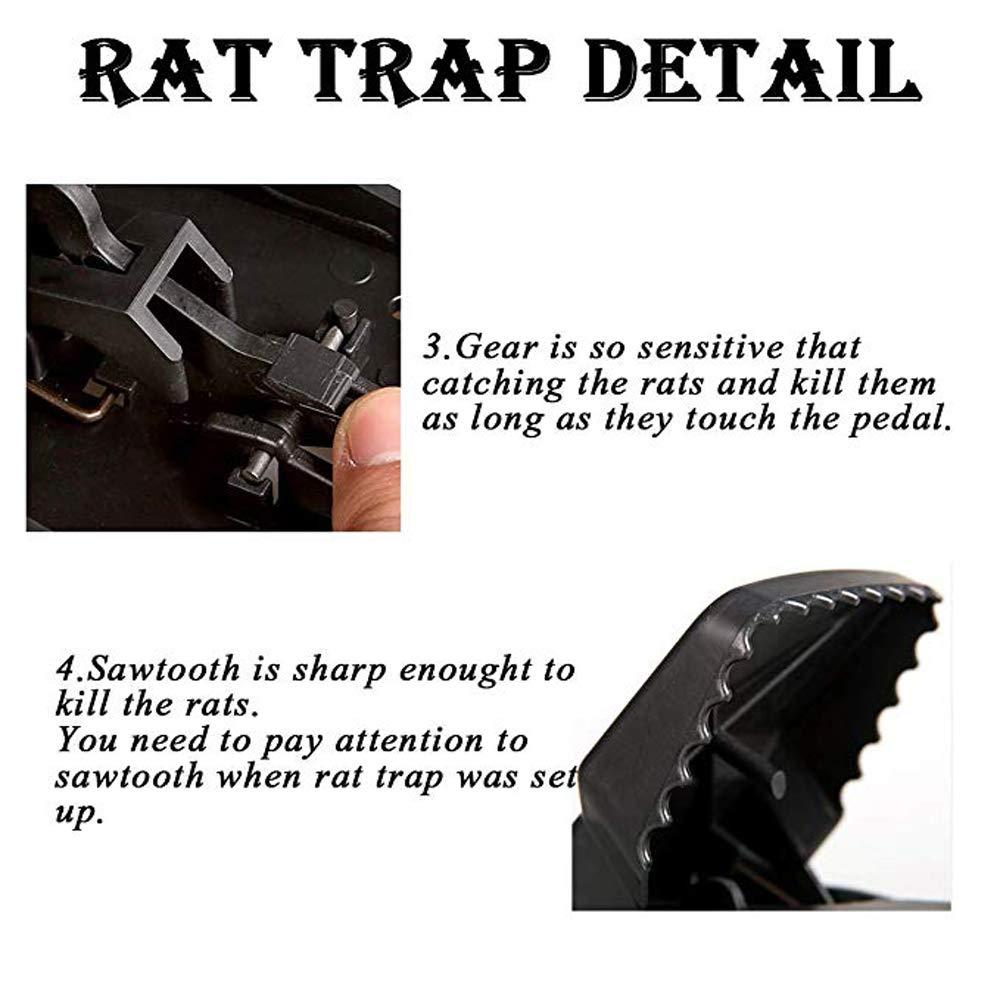 Trampas para Ratas Grandes y potentes Mefe Control de Ratas sin venenos da/ñinos o Productos qu/ímicos