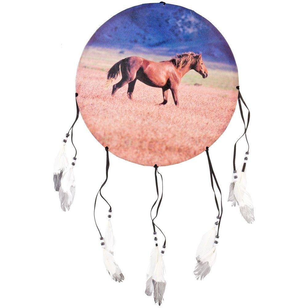 Animal World - Horse Side Profile Dream Catcher - Multi