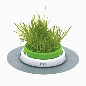 Catit Grass Planter, White/Green