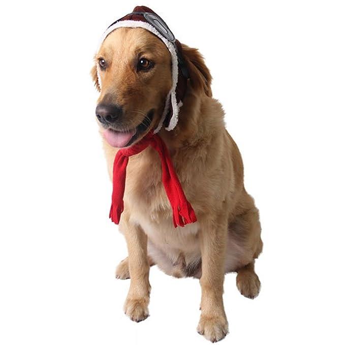 Amazon.com: ZTL Pet Cool Piloto Sombrero y Bufanda Set de ...