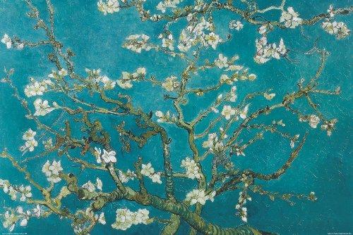 Pyramid Almond Blossoms Decorative Poster