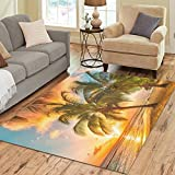 Cheap InterestPrint Tropical Palm Tree Beach Area Rug Floor Mat 7′ x 5′ Feet, Ocean Sea Seaside Hawaii Summer SunThrow Rayon Fiber Carpet Rugs for Home Living Dining Room Decoration