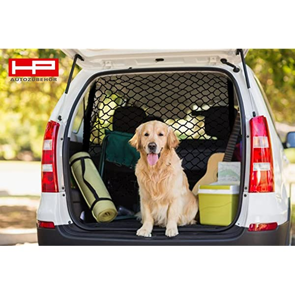 Carpoint 0910022 Hundenetz