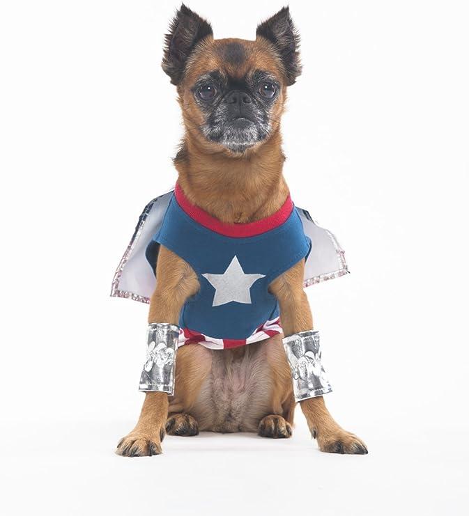 Pet Fashion Moda Mascota Halloween Superdog Boy Disfraz para ...