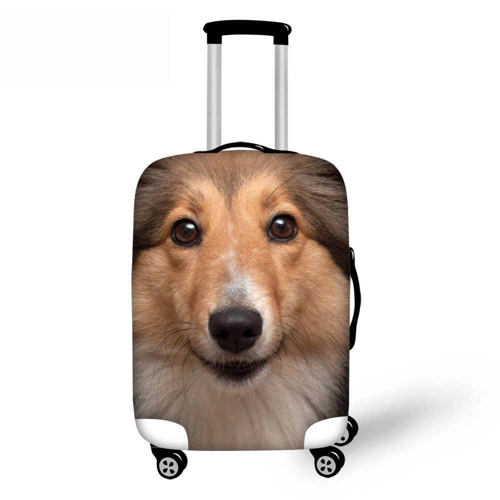 Boy with cute doggy design swivels his carry-on suitcase with hard edges M 22-24