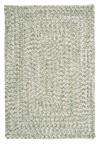 Catalina Polypropylene Braided Rug, 4-Feet by 6-Feet, Greenery