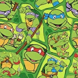 5 Foot Twin Weighted Blanket by Lifetime Sensory Solutions, Custom Made Weighted Sensory Blanket for Kids (05 lb for 40 lb child , Ninja Turtles)