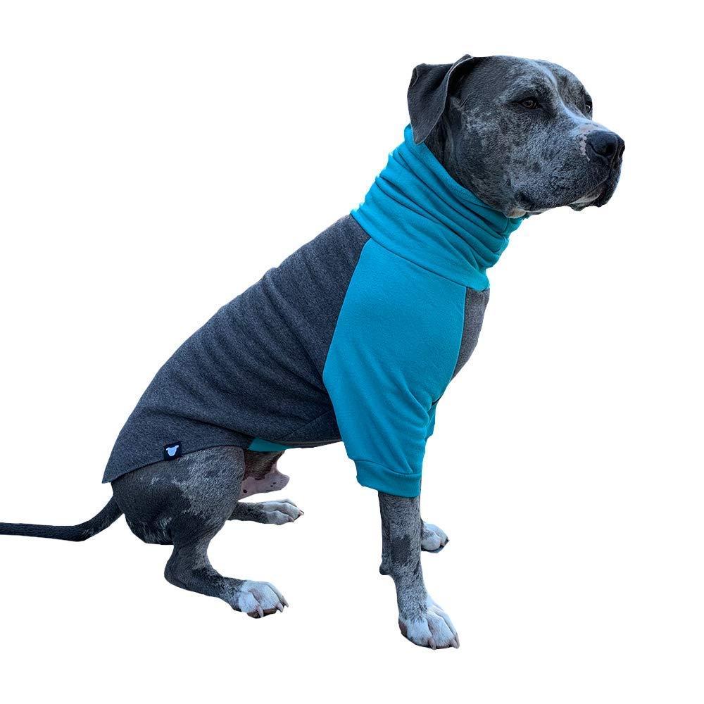 Tooth & Honey Dog Sweater/Large Dog Sweater/Pitbull Sweater/Dog Sweatshirt/Pullover (Medium)