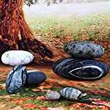 WOWMAX Three-Dimensional Curve Huge Living Stones Floor Pillows 7 Piece Set Random Combination Mixed Designs Home Decoration Stuffed Throw Pillows Big Rock Pillows Pebble Pillows 7 PCS Mixed Styles
