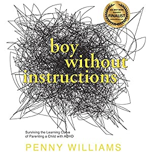 Boy Without Instructions Audiobook