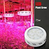 Glotech 75W Red & Blue LED Grow Light for Garden GreenHouse Indoor Plant Growing Plants(75w grow light) Review