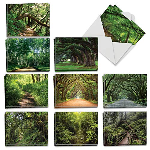 Nature Trail - 20 All Occasion Note Cards with Envelope (4 x 5.12 Inch) - Beautiful Boxed Assorted Scenery Greeting Notecards - Natural Landscapes, Stationery (2 Each, 10 Designs) AM6467OCB-B2x10