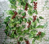 Colorfulife® Artificial Lifelike 91'' Grape Vine Fruit Vines Ivy Hang Rattan Leaves Pipeline Cane Garland Wall Hanging Plant Wedding Party Home Garden Room Balcony Decoration (5)