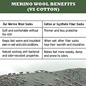 MERIWOOL Merino Wool Blend Hiking and Trekking Crew Socks Pack of 3 Pairs – Small/Blue