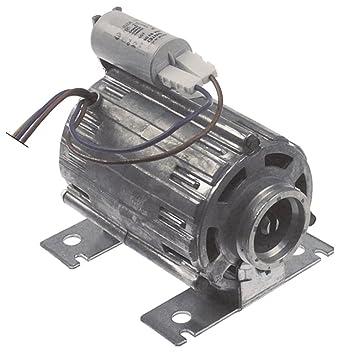RPM C013726 - Motor de bomba para Astoria-Cma Gloria-DISPLAY-LCL ...