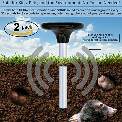 Garden Ninja Solar Pest Repeller – Safe repellent for Mole, Vole, Gopher, Snake. Pet Friendly, Solar Powered, Sonic & Ultrasonic Rodent Repellant. No Poison Granules or Spray! NO MORE Pesky Moles!