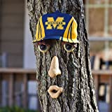 University of Michigan Forest Face