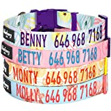 Blueberry Pet 8 Patterns Personalized Dog Collar, Lemon, Small, Adjustable Customized ID Collars for Small Dogs Embroidered with Pet Name & Phone Number