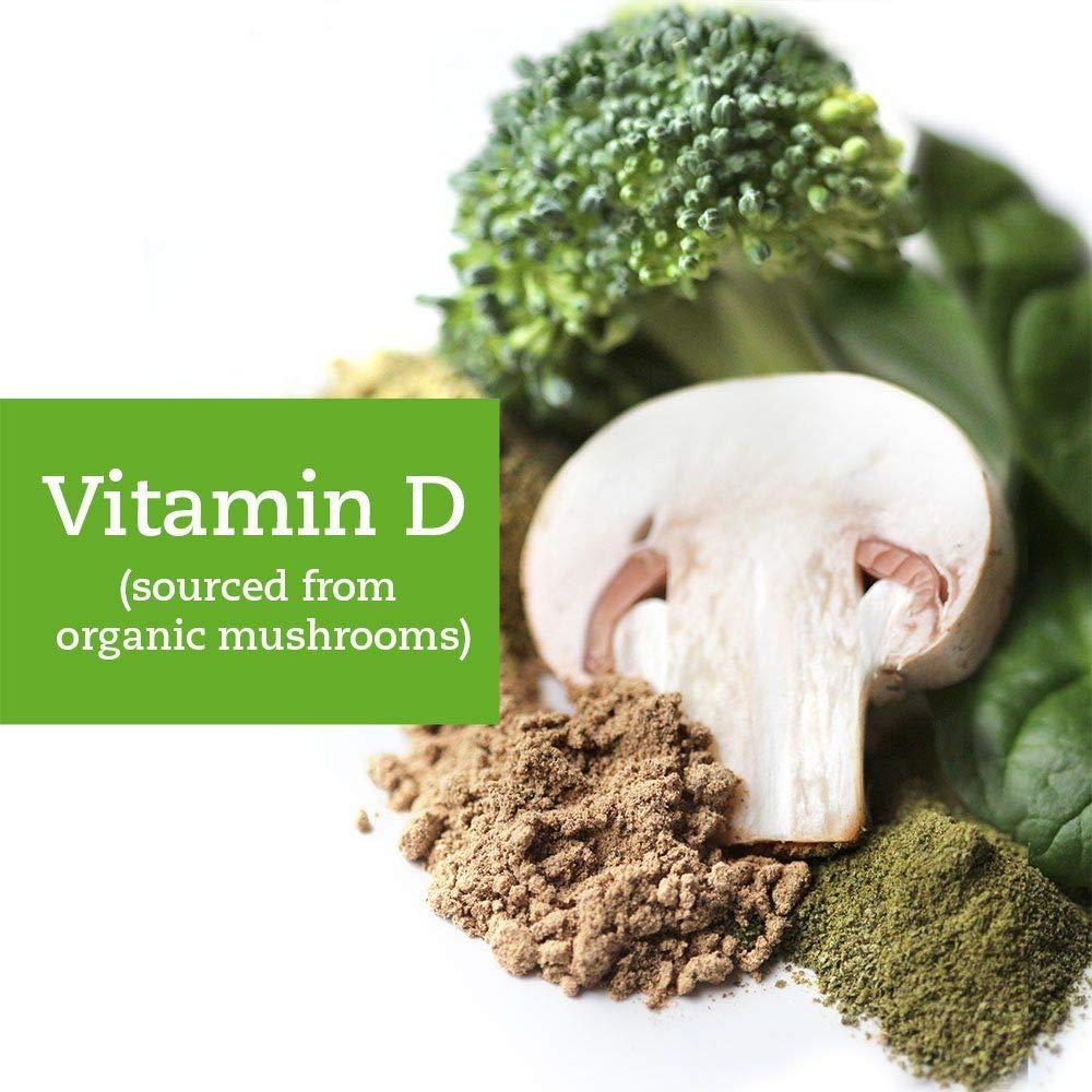 Supergreen +D - Super alimentos orgánicos, 2000 IUs de Vitamina D orgánica, 5 mil millones de probióticos, enzimas digestivas - salud intestinal, ...