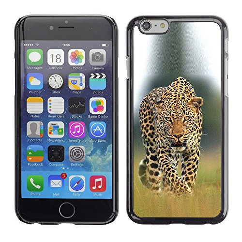Plastic Shell Protective Case Cover || Apple iPhone 6 || Big Cat Ferocious Nature @XPTECH