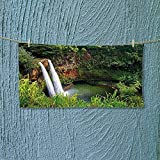 Nalahome Camping Microfiber Towel Twin Wailua Waterfalls Kauai Hawai Greenery Forest Grass Nature Scenic View Green for Maximum Softness L39.4 x W9.8 inch