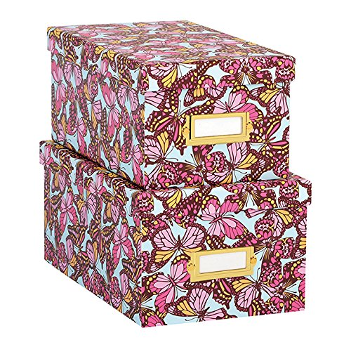 Anna Griffin Nesting Boxes in Flutterby Collection -- Set of 2 Boxes