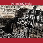 The Figure in the Shadows | John Bellairs