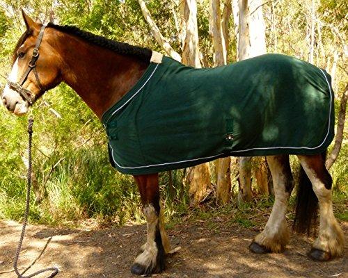 Back Length 120 cm Travel and Anti-Sweat Blanket Polar Fleece Blanket 165cm