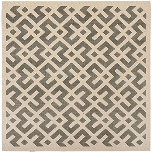 (Safavieh Courtyard Collection CY6915-236 Grey and Bone Indoor/ Outdoor Square Area Rug (7'10