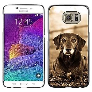 YiPhone /// Prima de resorte delgada de la cubierta del caso de Shell Armor - Mutt Black Terrier Hound Dog Canine White - Samsung Galaxy S6 SM-G920