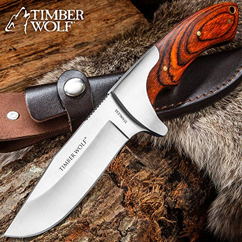 Timber Wolf Blazin Bowie Knife with Sheath – Hardwood Handle with Brass Lanyard Hole, Brass Pins – 9