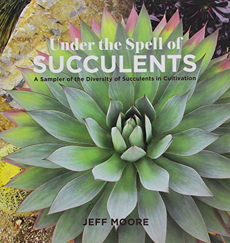 Under the Spell of Succulents: A Sampler of the Diversity of Succulents in Cultivation by Sunbelt Publications