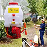 KANING Agricultural Weed Sprayer,25.4CC 20L 2-Stroke Gas Powered Sprayer Backpack Mist Blower Duster for Garden Lawn Yard Farm USA Stock